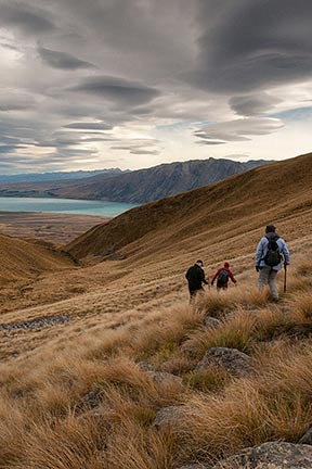 Tekapo Trek at Rex Simpson Hut