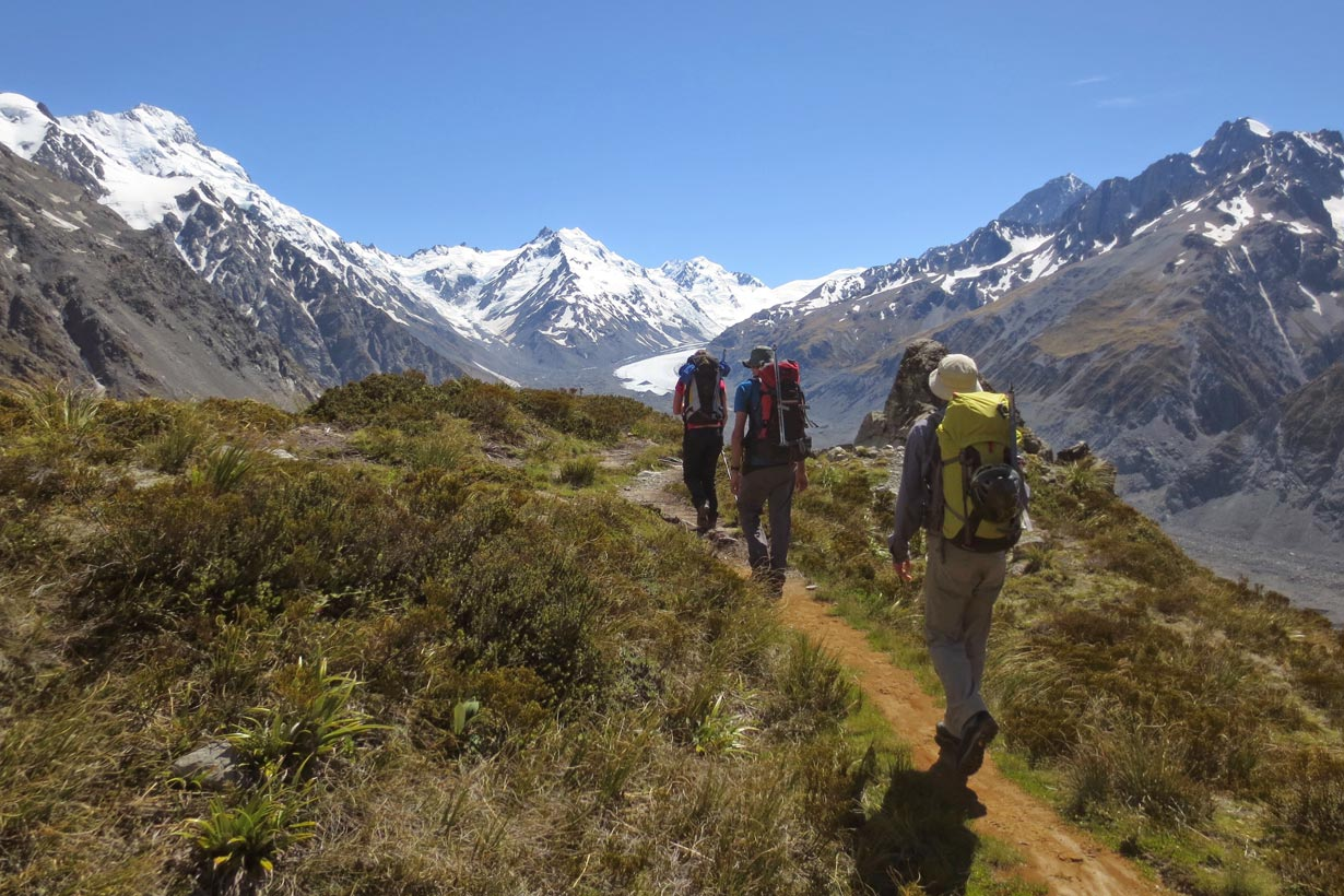 Aoraki Mt. Cook Trek - Ball Ridge, 3000m peaks