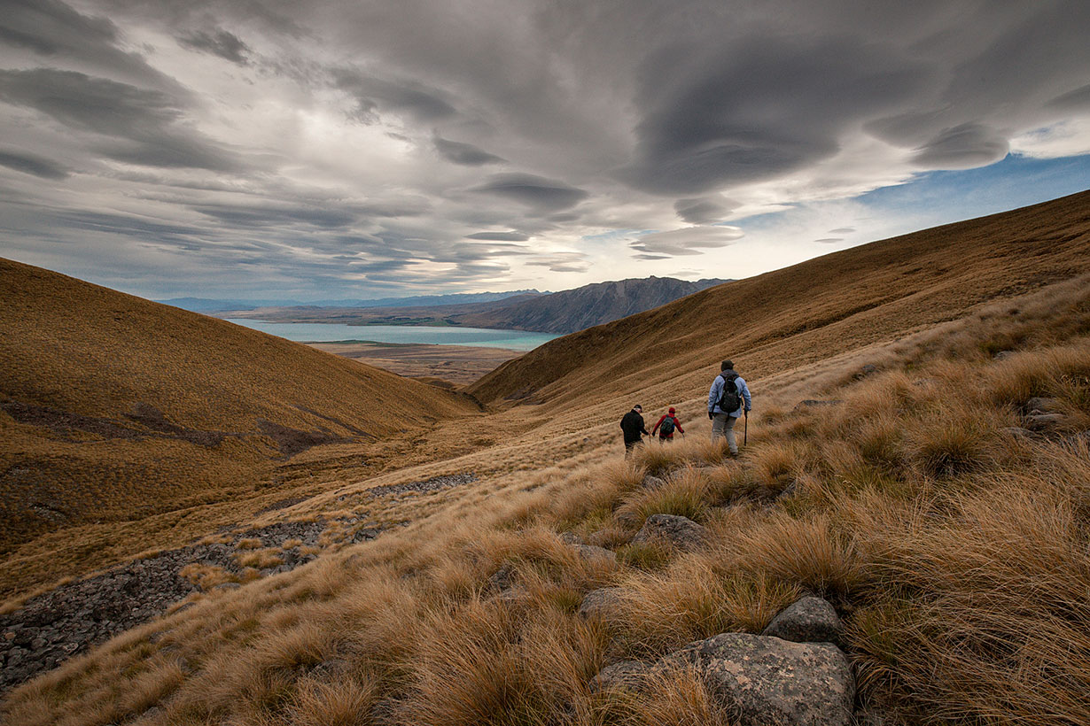 Tekapo Trek - Descending to Mt. Gerald Stream