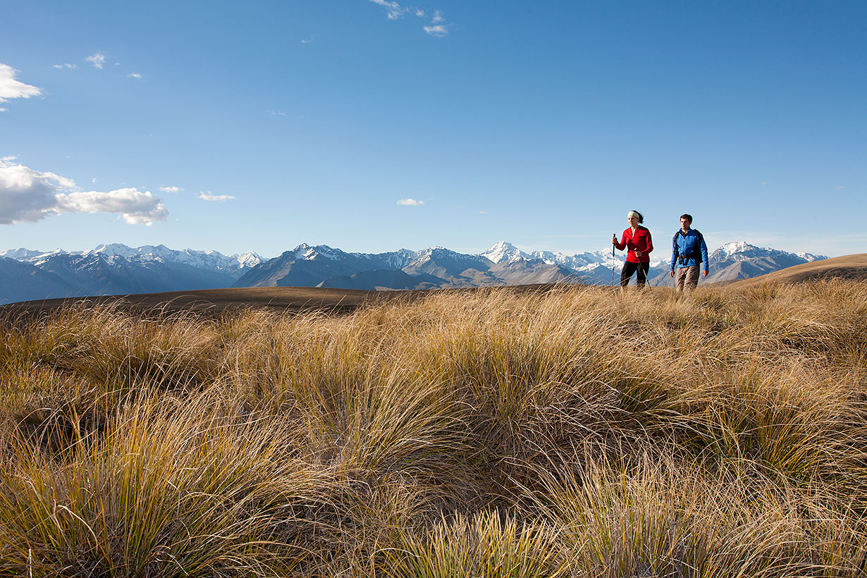 Hiking along Snake Ridge, Tekapo Trek
